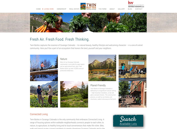 Website Design Twin Buttes